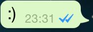 Blaue Haken in Whatsapp Nachricht